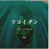 フコイダン